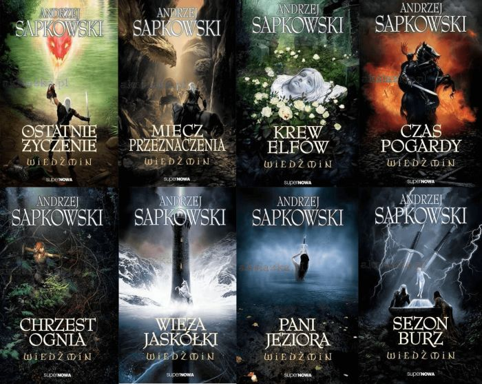 the order of the witcher books